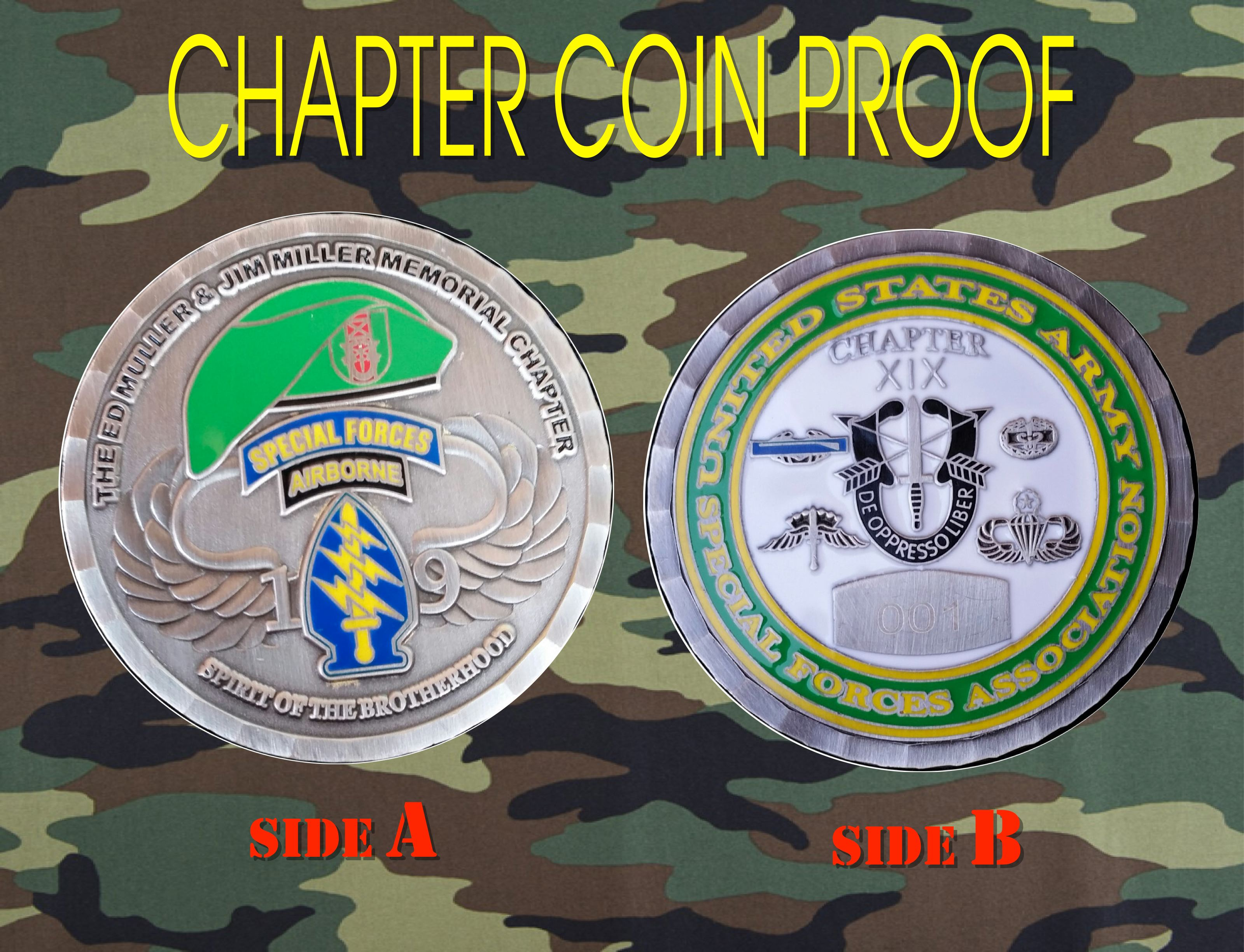 Chapter Coin Proof